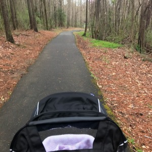 A stroller on the White Deer/Lake Benson Trail